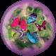Front of Butterflies Viz-A-Ball, for Butterflies (thumbnail 1)