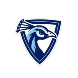 University of Upper Iowa athletic logo